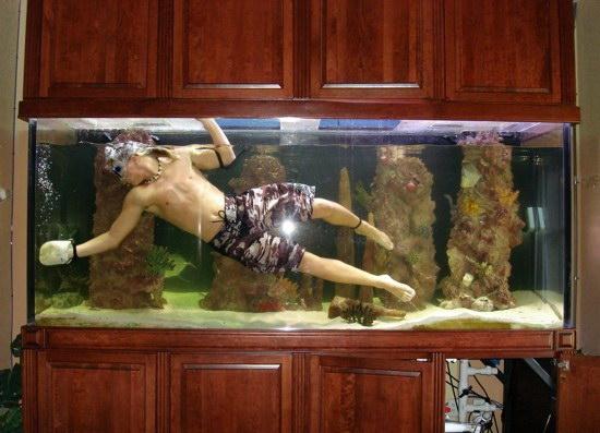 Рыбки для аквариум в домашних условиях 620