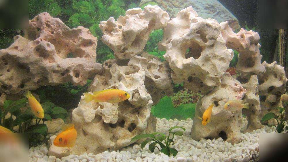 Камни для аквариума большие