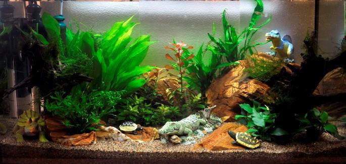 аквариум 100 литров